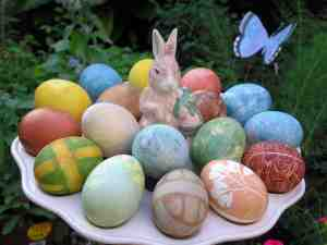 eggswithrabbit25