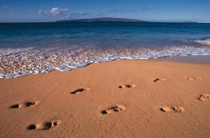 ساحلي براي آرامش